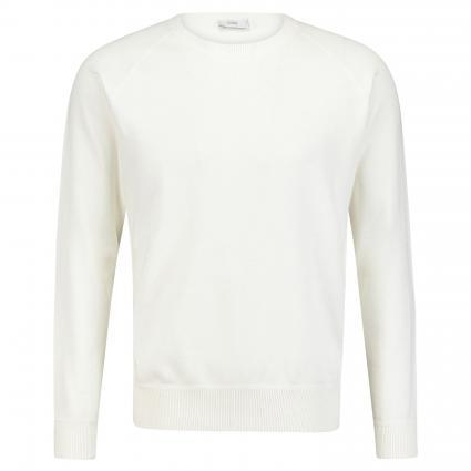 Pullover mit Rippstrickbündchen ecru (218 ivory) | L