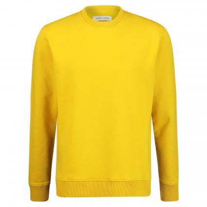 Unifarbenes Sweatshirt 'Aviso' gelb (lemonn curry) | XL